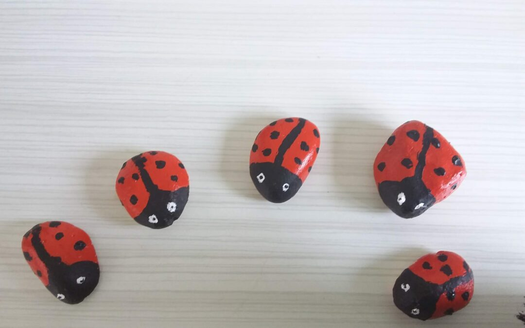 Pebble Ladybirds